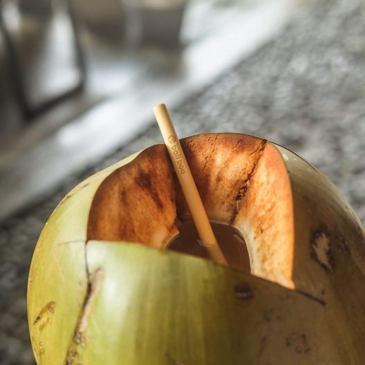 coconut with a bamboo straw