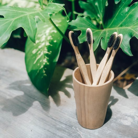four bamboo toothbrushes in a wooden cup in front of some plants